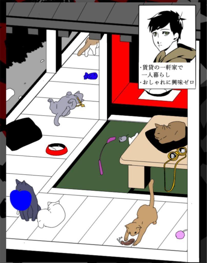 【浮気され女】 ステージ4「無類の猫好きな彼」の問題.3の攻略