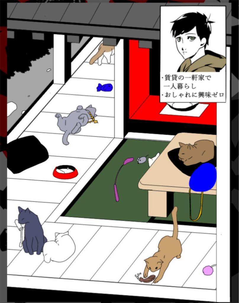 【浮気され女】 ステージ4「無類の猫好きな彼」の問題.4の攻略