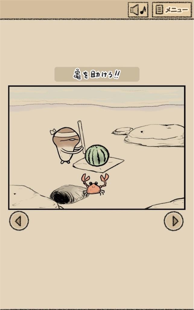 【なめよん ~なめこの脱出ゲーム~】 13話「亀を助けろ!!」の攻略1