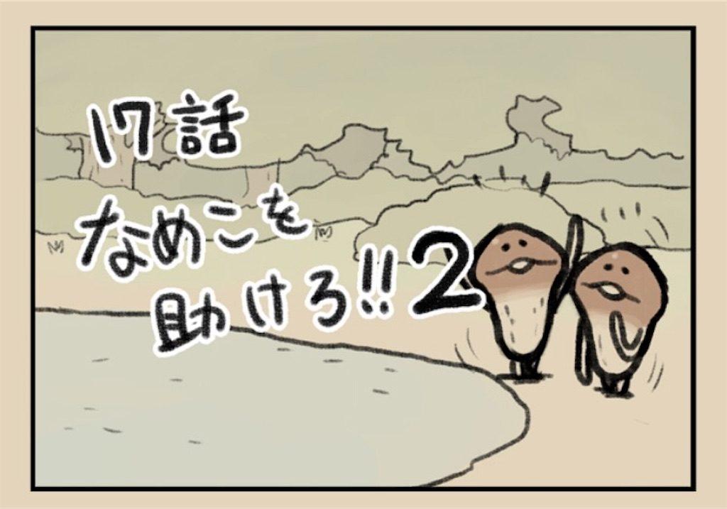 【なめよん ~なめこの脱出ゲーム~】 17話「なめこを助けろ!!2」の攻略
