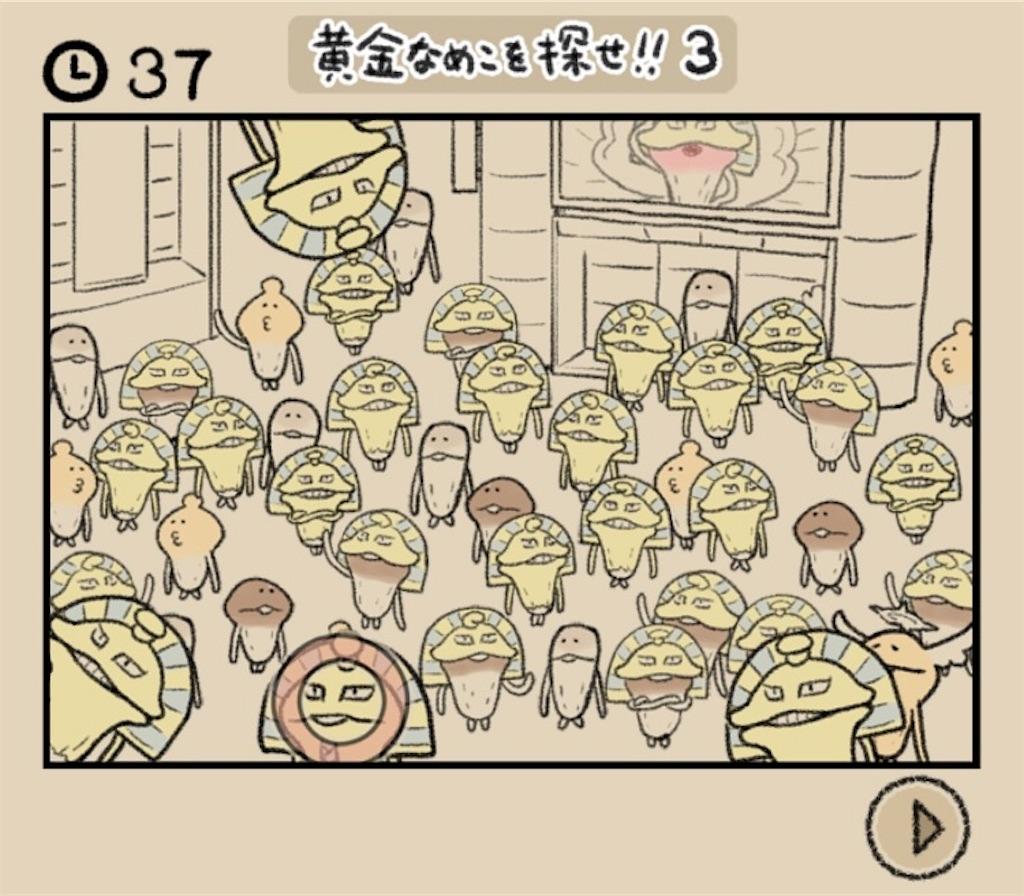 【なめよん ~なめこの脱出ゲーム~】 22話「黄金なめこを探せ!!3」の攻略3