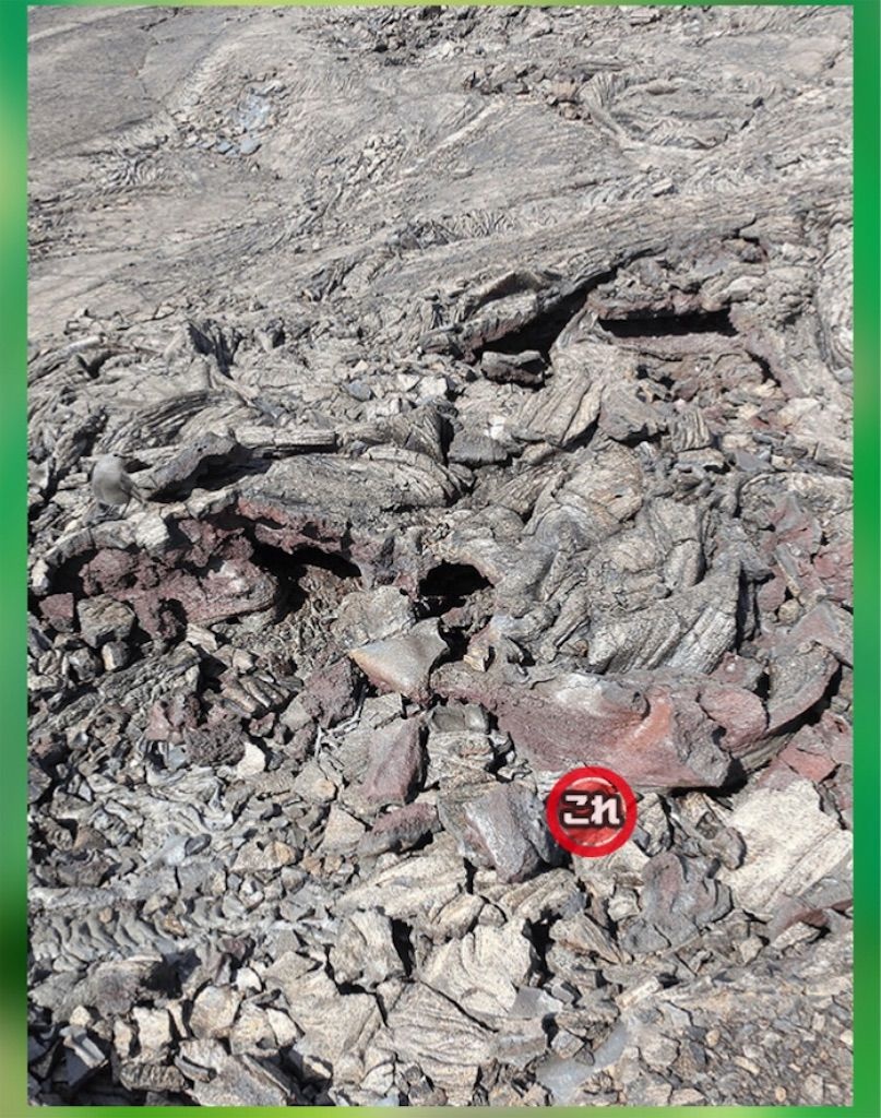 【どうぶつみっけ3!】 FILE.02「岩肌」の攻略