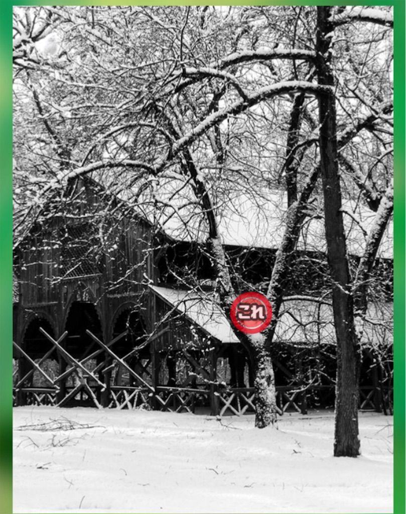 【どうぶつみっけ3!】 FILE.05「冬景色」の攻略