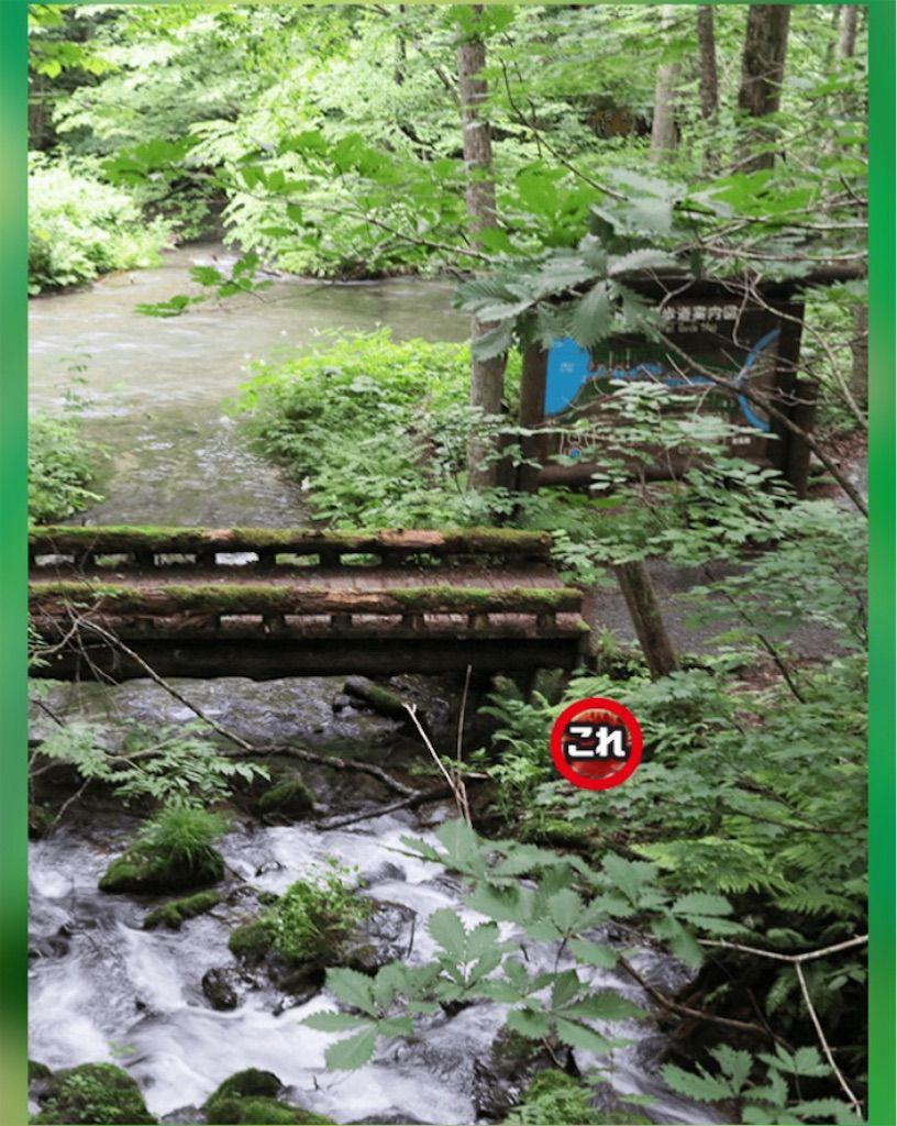 【どうぶつみっけ3!】 FILE.22「橋」の攻略
