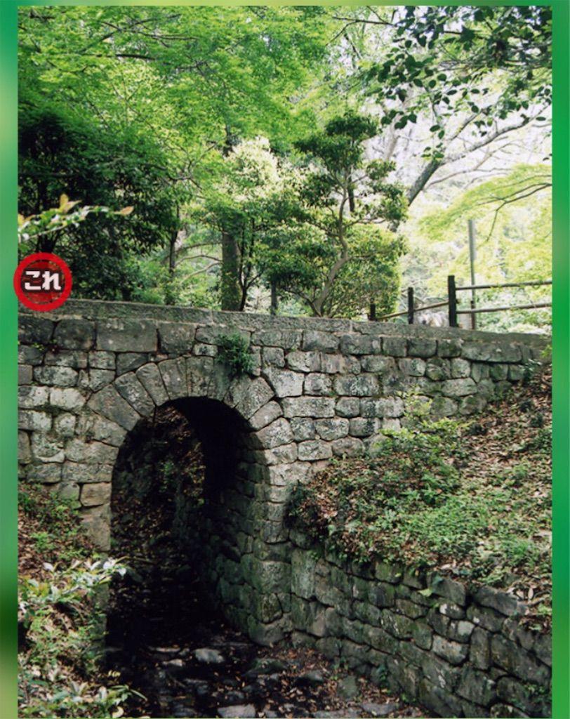 【どうぶつみっけ3!】 FILE.15「トンネル」の攻略