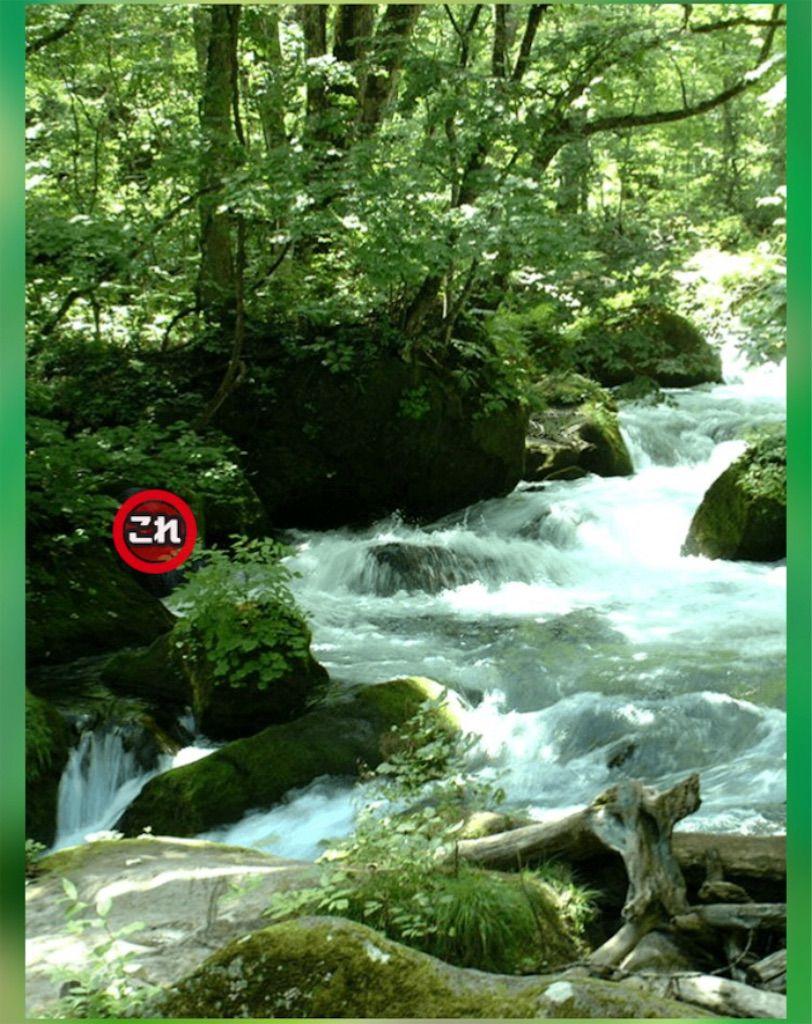 【どうぶつみっけ3!】 FILE.18「川のせせらぎ」の攻略