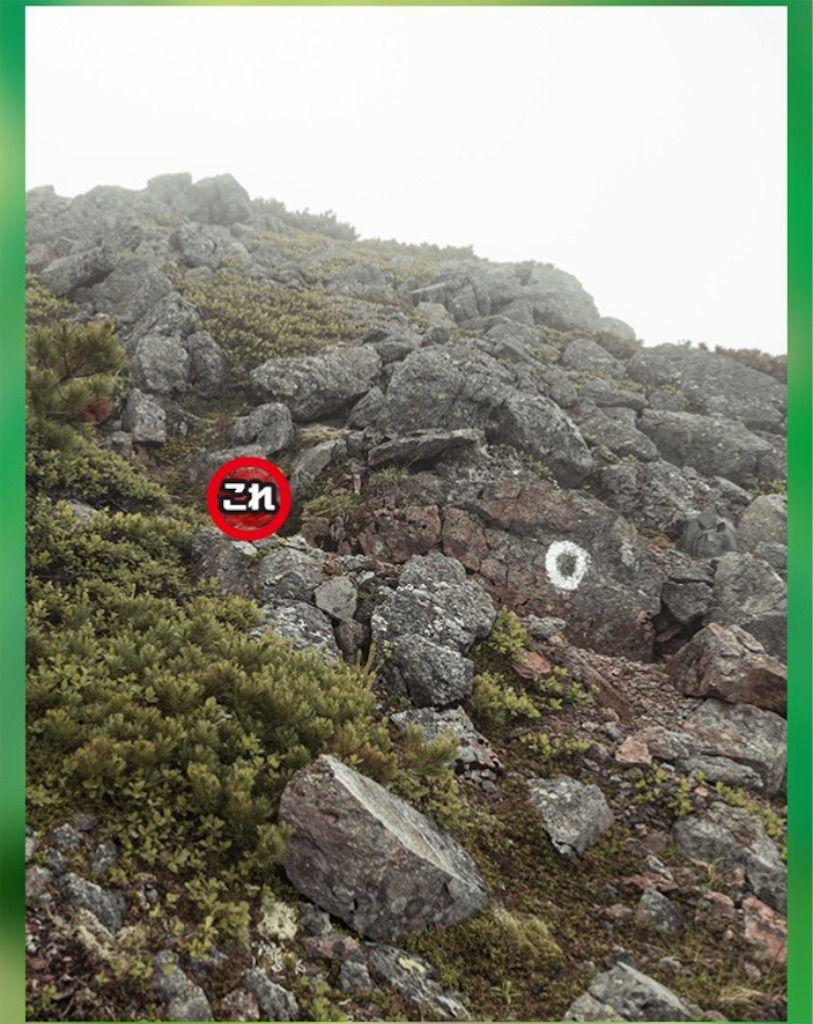 【どうぶつみっけ3!】 FILE.17「岩山」の攻略