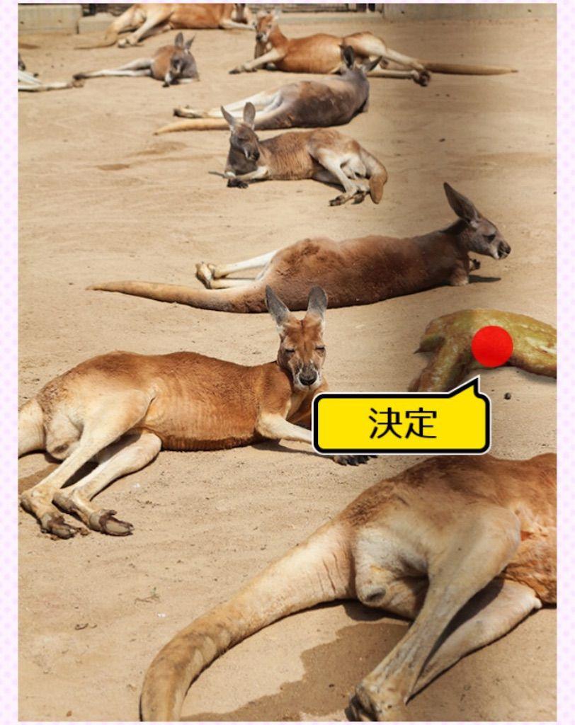 【よくみるとおかしい画像5】FILE.04の攻略