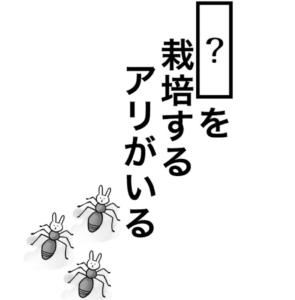 【知ってた?謎解き動物の雑学】 問題17の攻略