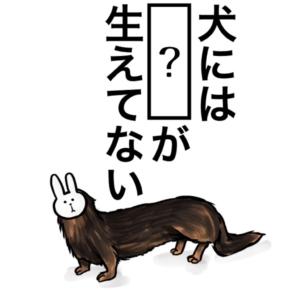 【知ってた?謎解き動物の雑学】 問題48の攻略