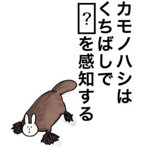【知ってた?謎解き動物の雑学】 問題46の攻略