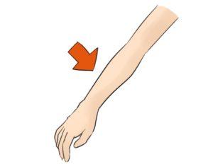 【これの名前】 64個目「手首と肘のあいだのこれ」の答え