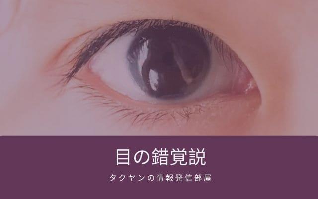 マニポゴの説3: 目の錯覚