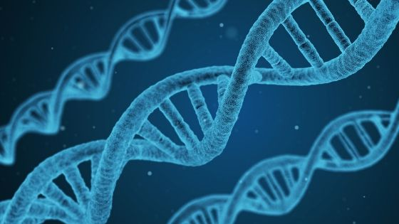 ジョンベネ殺害事件 DNA