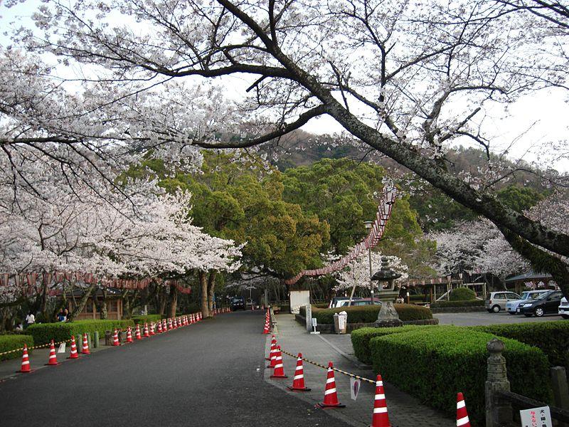 徳島県の心霊スポットの西部公園