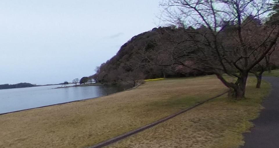 湖山池 青島