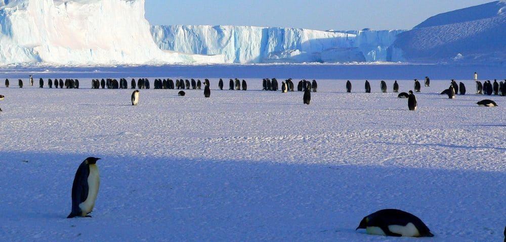 南極や北極にナチスの秘密基地?