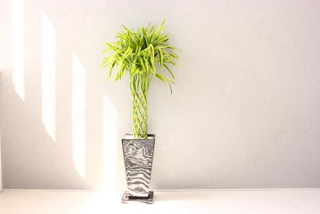 会津若松母親殺害事件で犯人は植木鉢に母親の腕を植えた